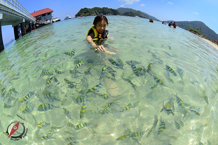 redang-island-malaysia-6