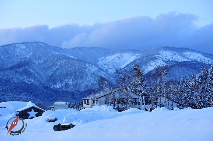 3 Akita Snow 3