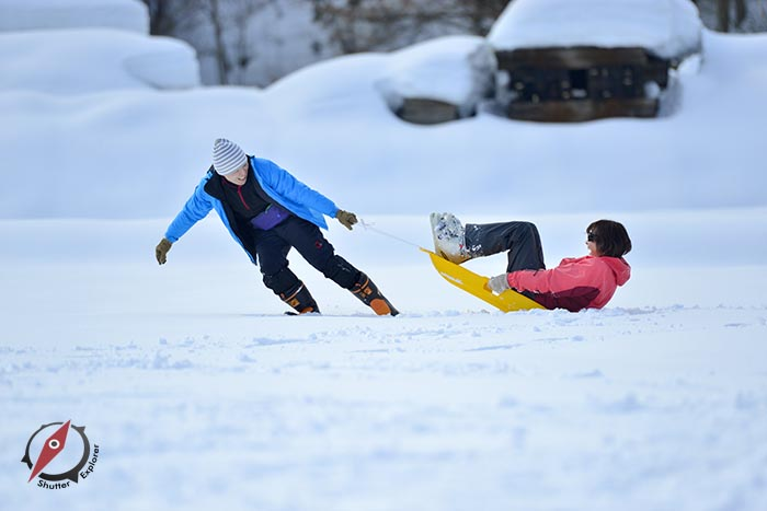 8 Akita Snow 8