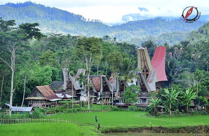 Tana Toraja 7
