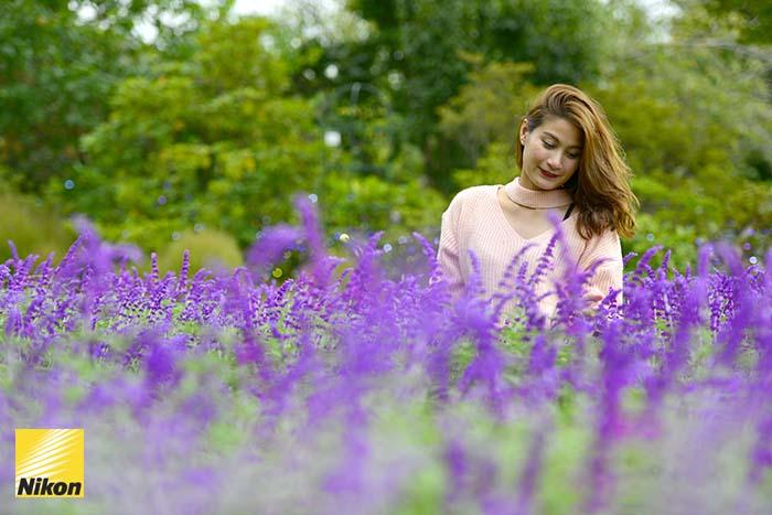 สวนดอกไม้ Ashikaga flower park 2