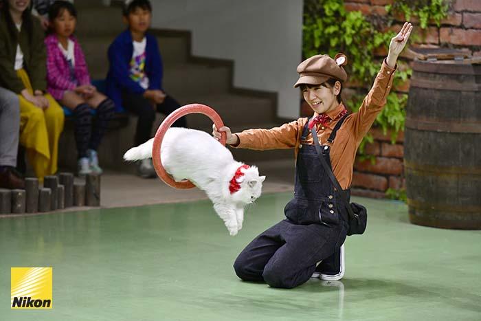 สวนสัตว์ nasu oukoku 3
