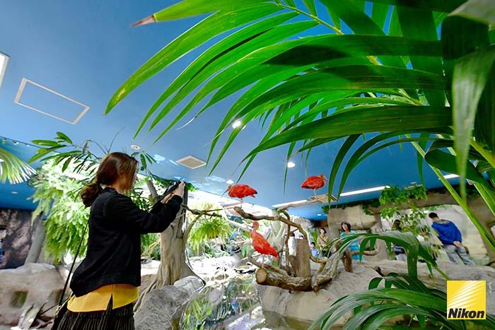 สวนสัตว์ nasu oukoku 5