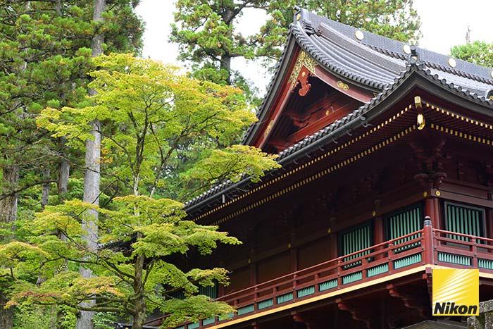 nikko ศาลเจ้ามรดกโลก 5