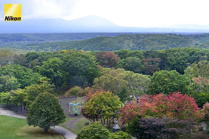 tomakomai midorigaoka park 2
