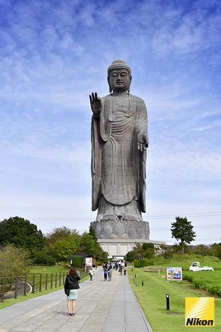 ushiku daibutsu พระใหญ่ 1